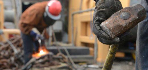 trabajadores actividad económica