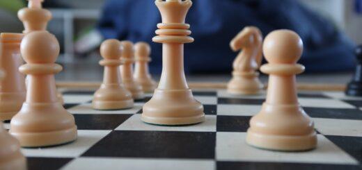economistas ajedrez mujeres